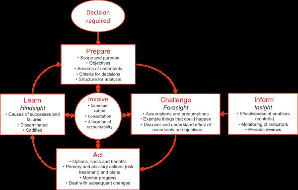 Alternative risk management process